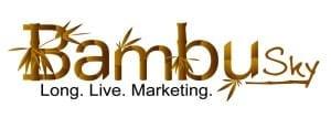 bambusky-logo-sourse-hi-resolusion-1024x366